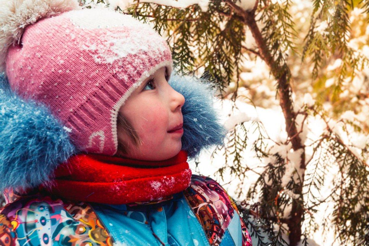 в сказочном лесу - Irina Novikova
