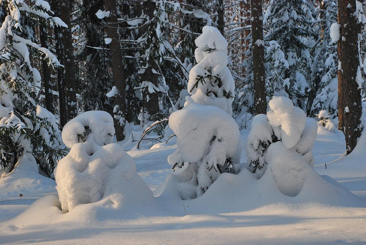 Зимняя сказка - Валерий Толмачев