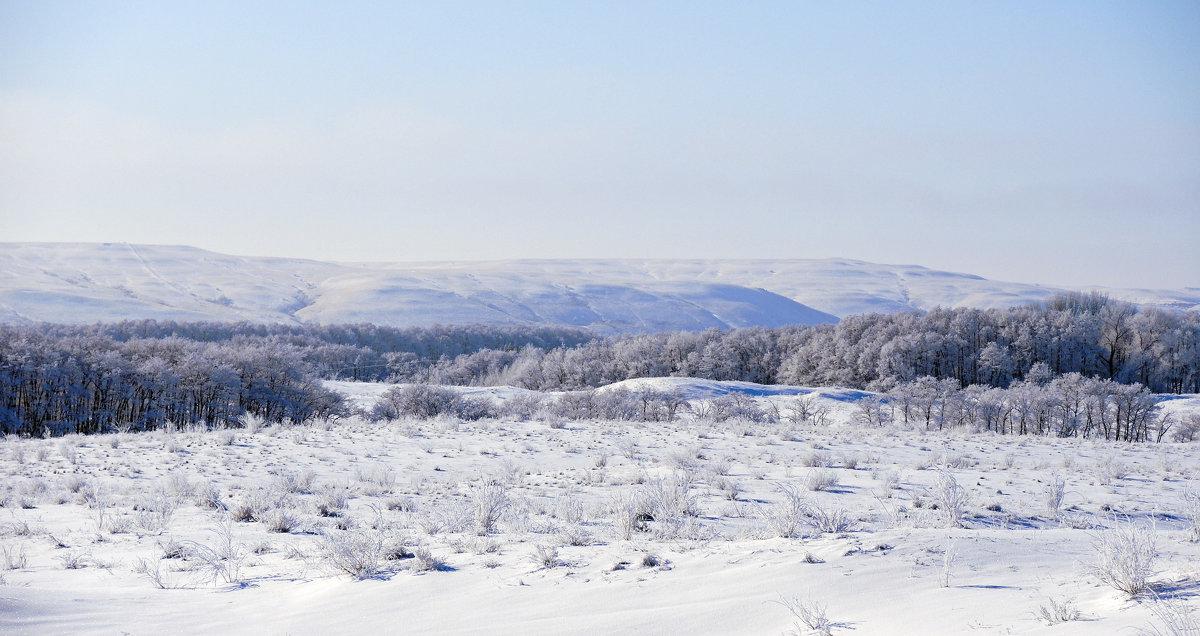 зима в придонье - татьяна