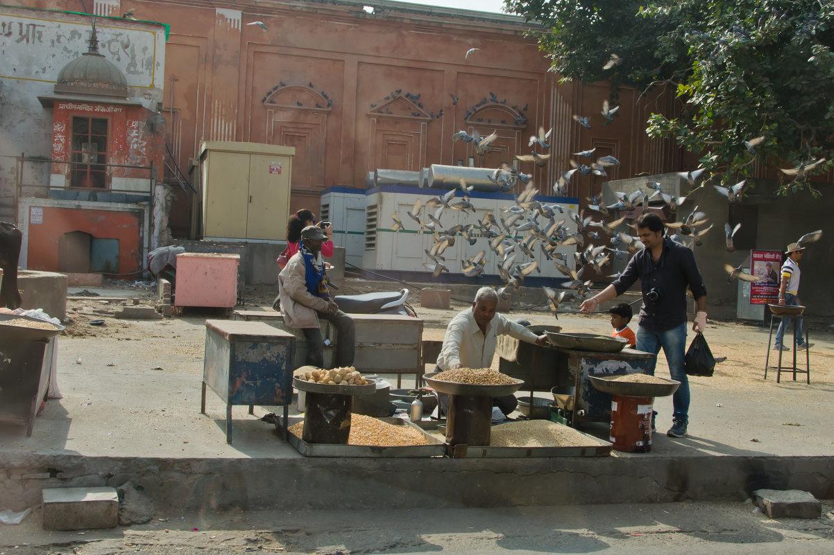 Уличные торговцы в Джайпуре - Татьяна Василюк