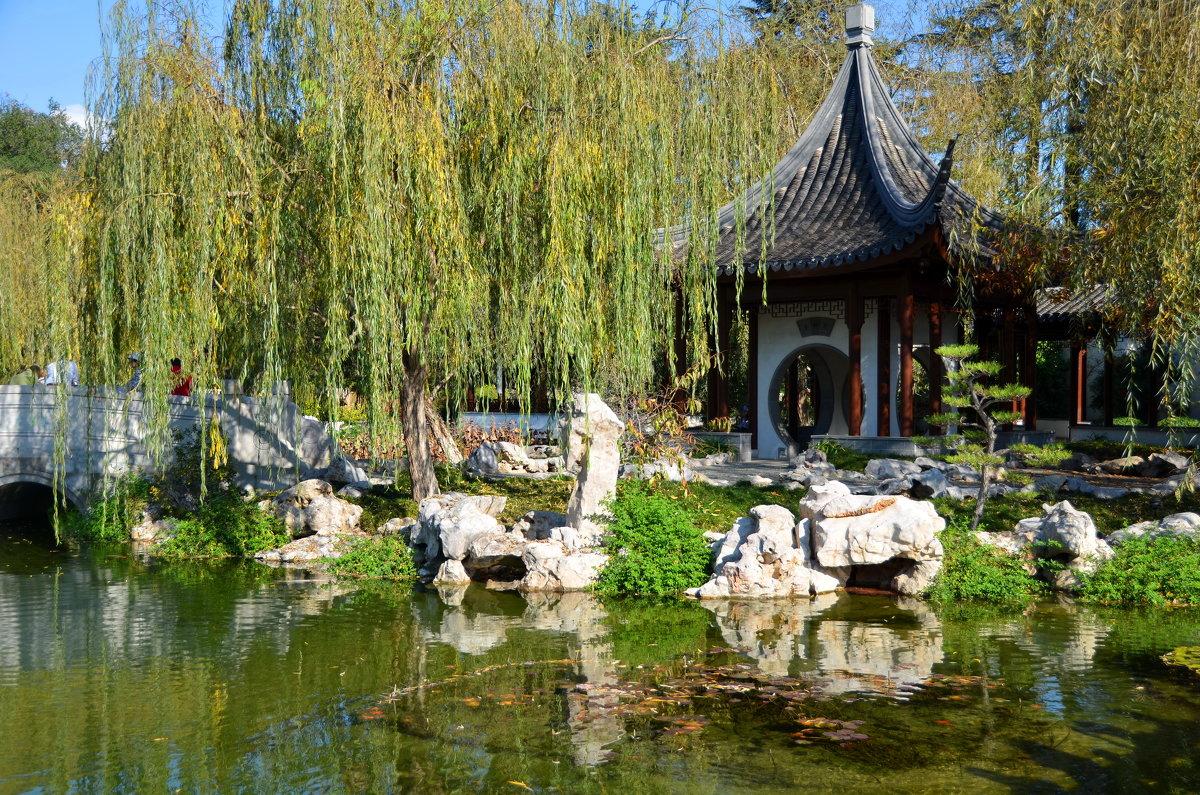 В японском саду - Николай Танаев