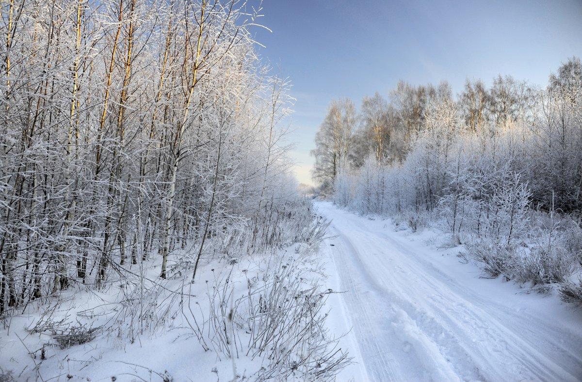 Морозный день... - Ирина Токарева