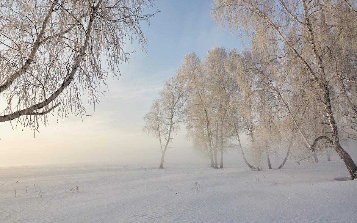 Утро туманное - Николай Мальцев