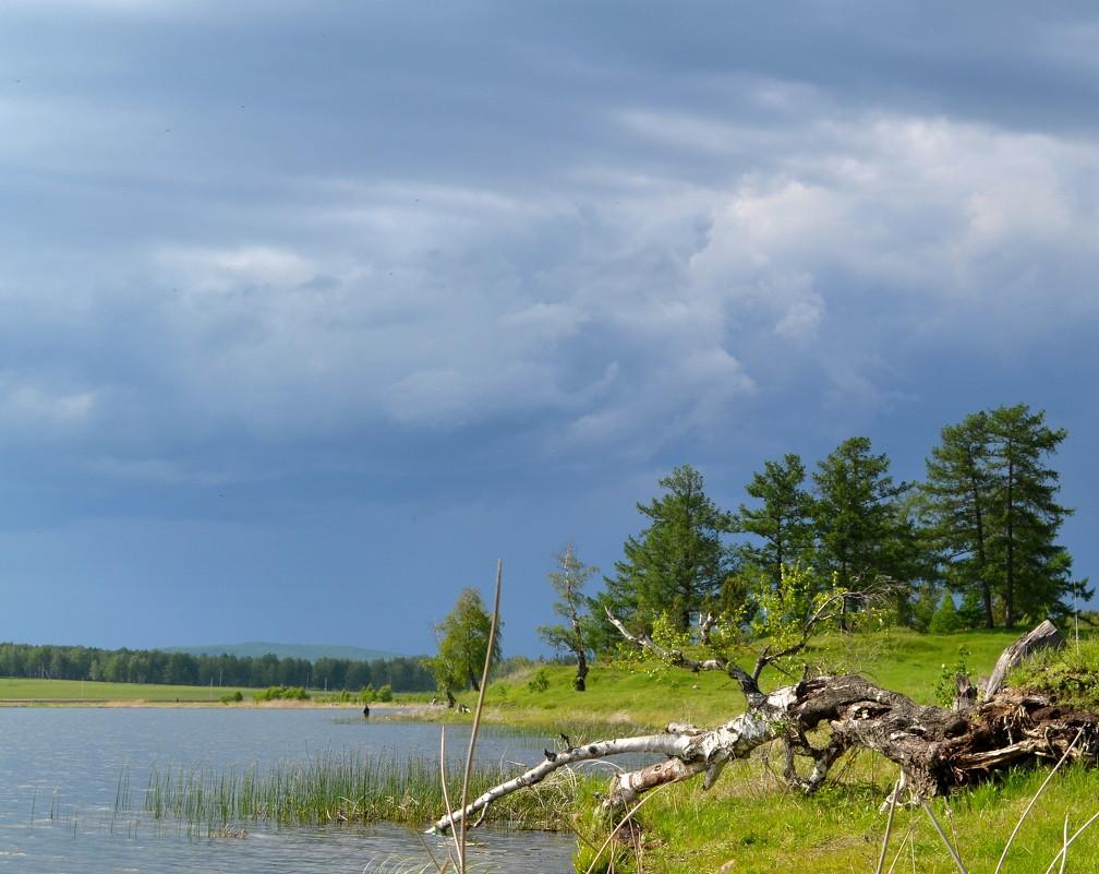 на озере перед дождем - Лариса Корсакова