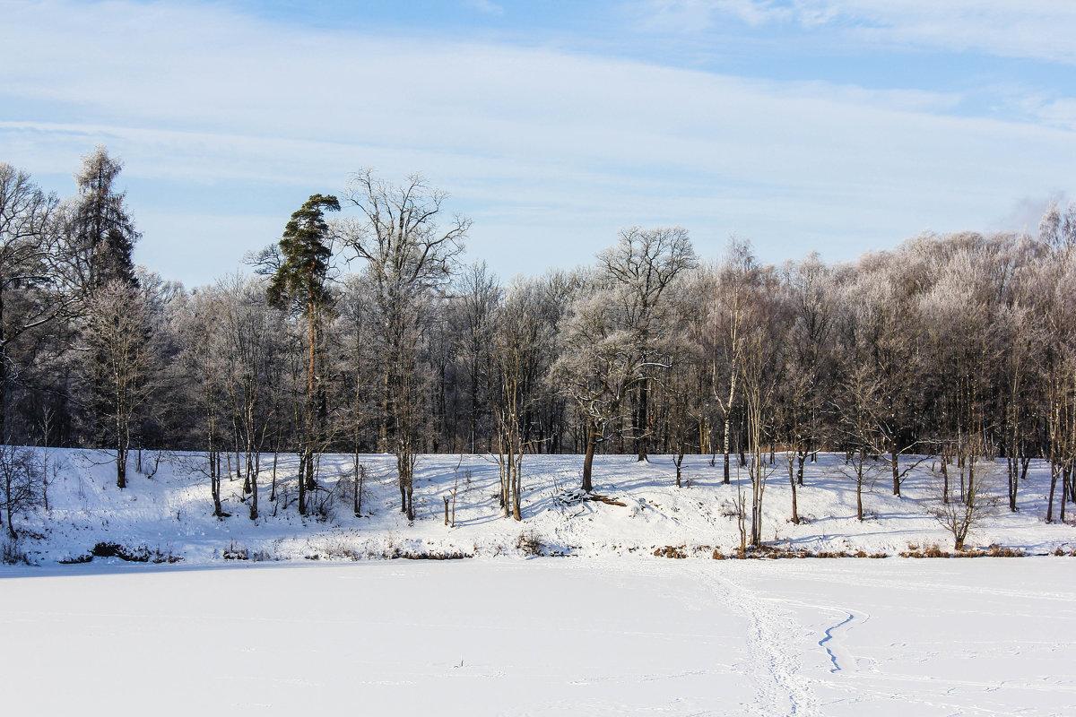 Прогулка по Приоратскому парку - Алёнка Шапран