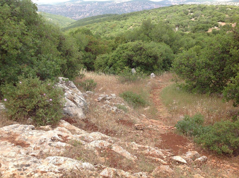 Пейзажи Иордании - Ирина