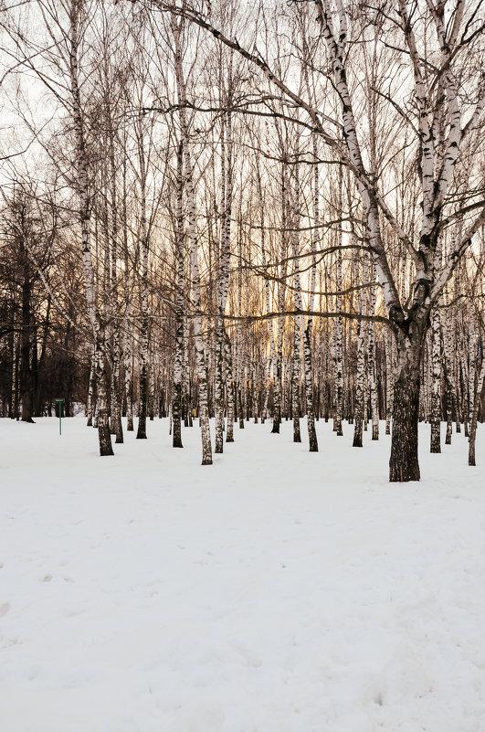 на закате - Олеся Семенова