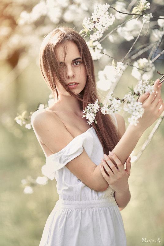 Весна - Сергей Басин