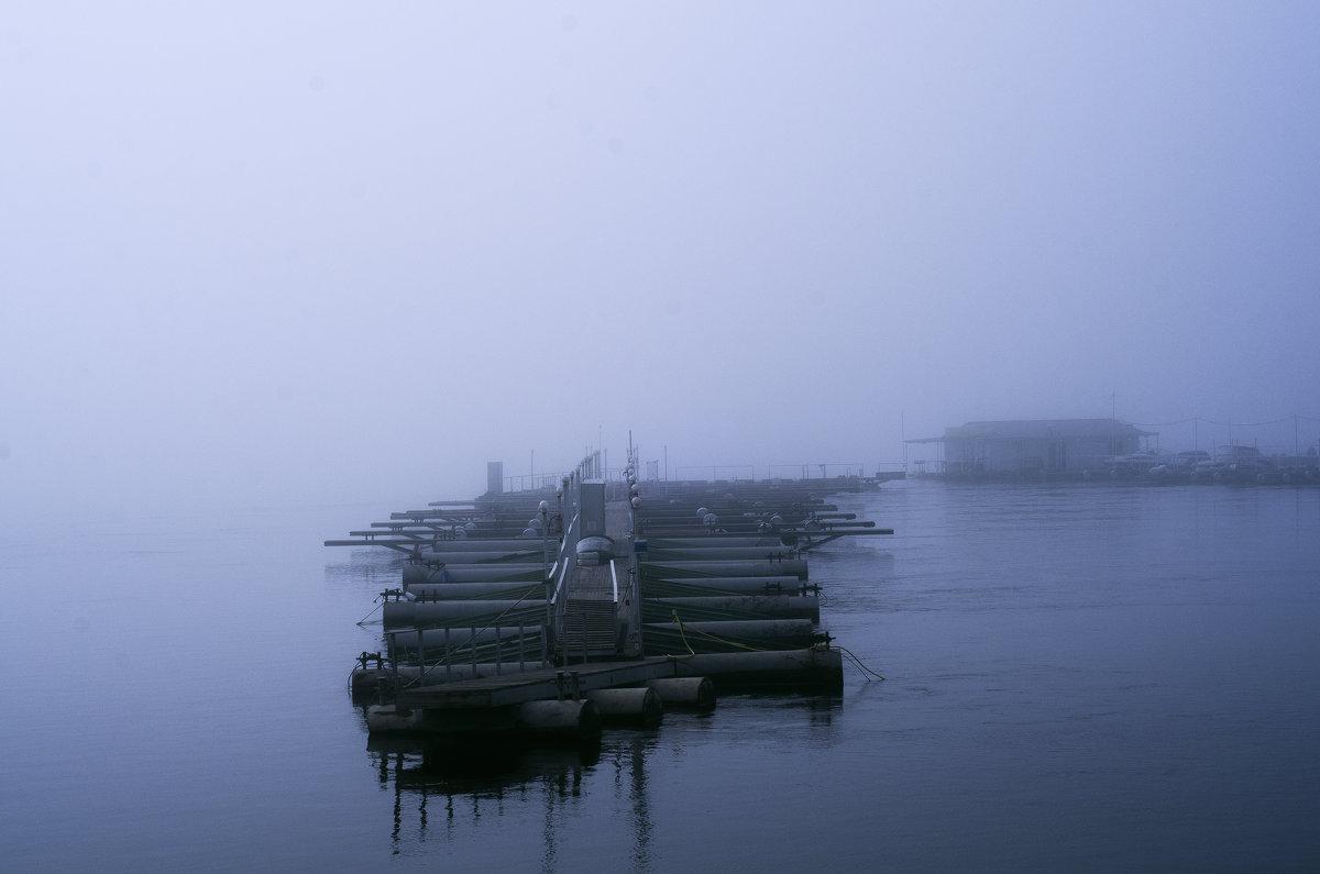 Туман - Ирина