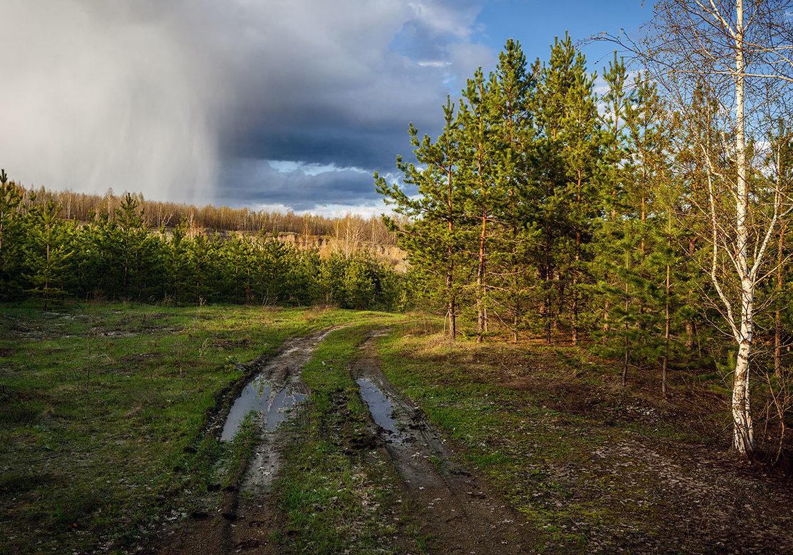 Апрельские дожди... - Влад Никишин