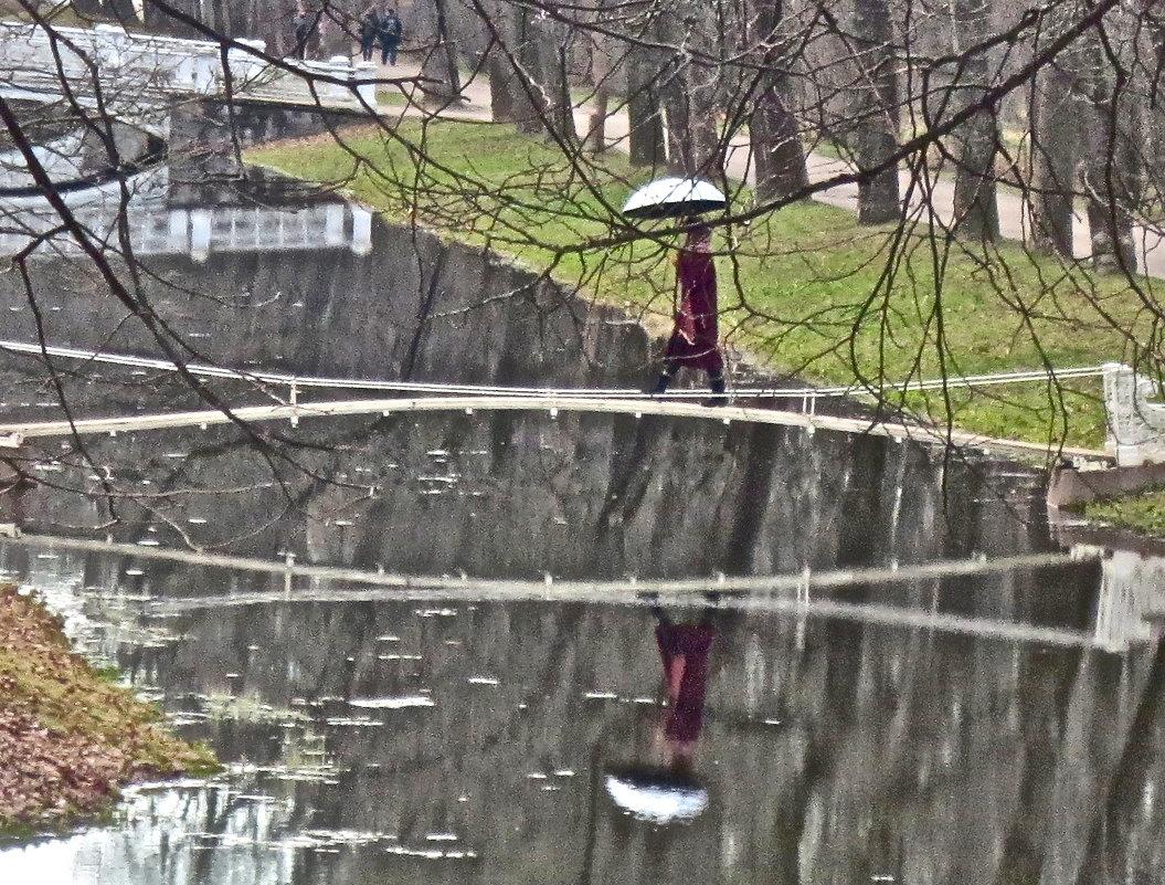 прогулки под дождём - Елена