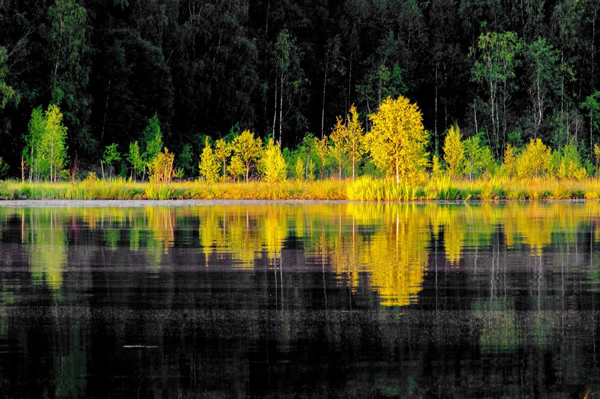 Вечер на Ковжском озере - Валерий Талашов