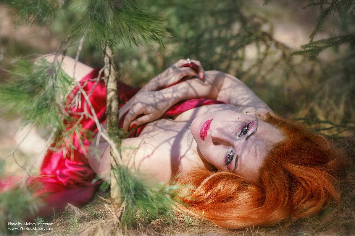 Утро в сосновом лесу - Алексей Мартынов