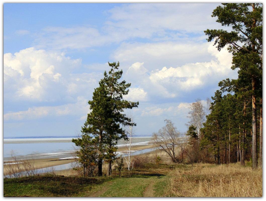 Весенний пейзаж. - Мила Бовкун