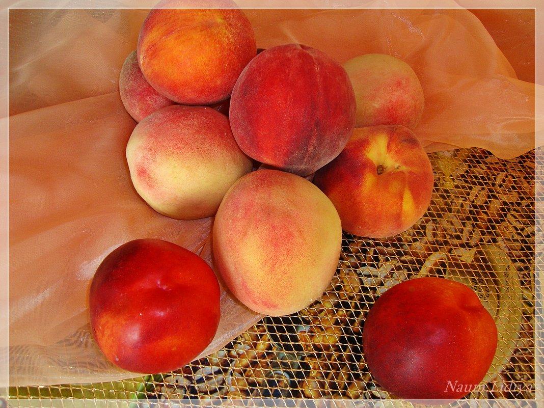 Сочные персики - Лидия (naum.lidiya)