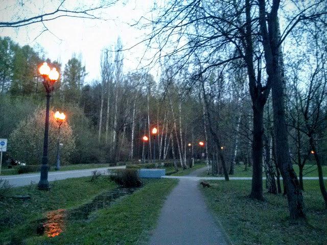 Сумерки в  Измайловском парке. - Larisa Ereshchenko