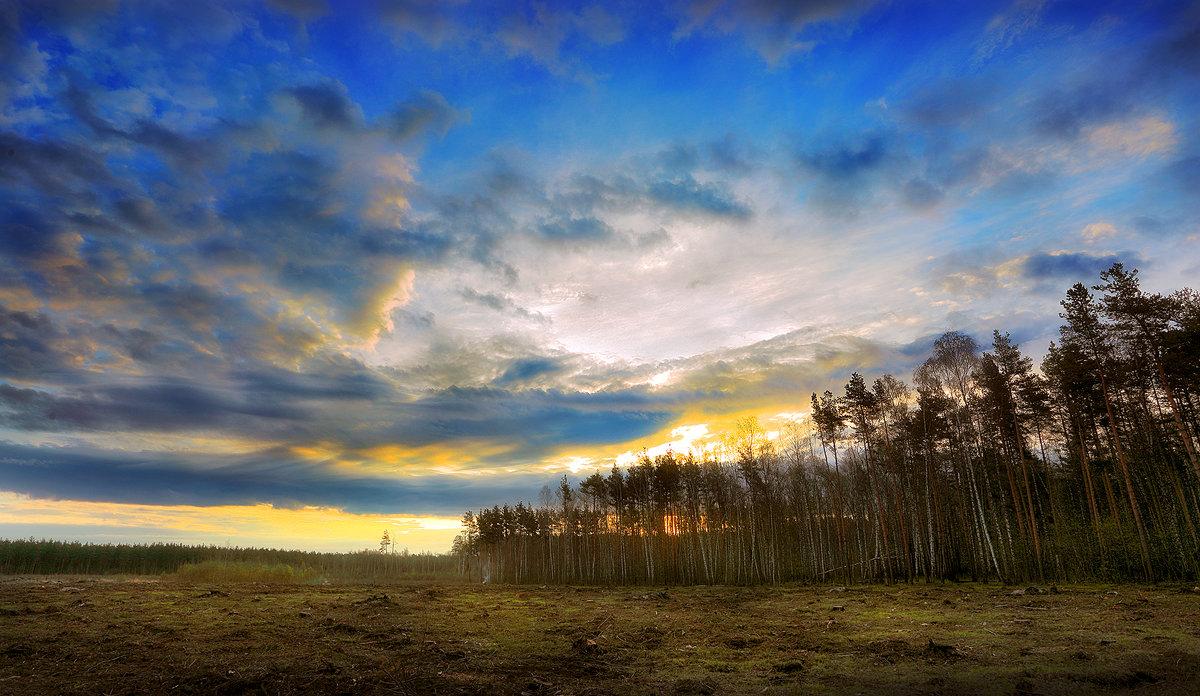 Апрельский рассвет...4 - Андрей Войцехов