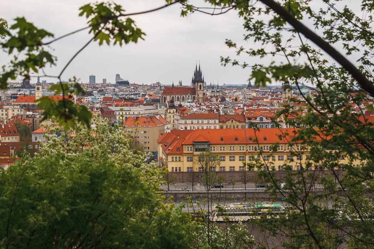 Вид с Летенских Садов на Прагу - Алексей Морозов