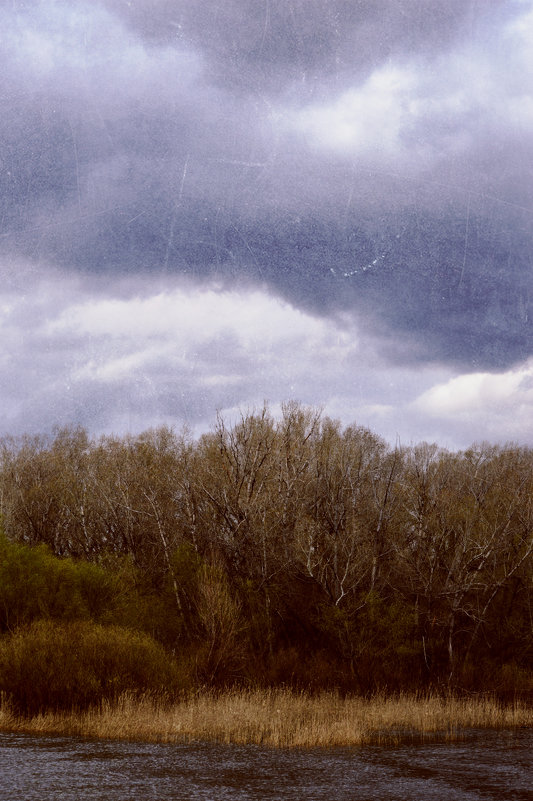 Природа - Вадим Поботаев