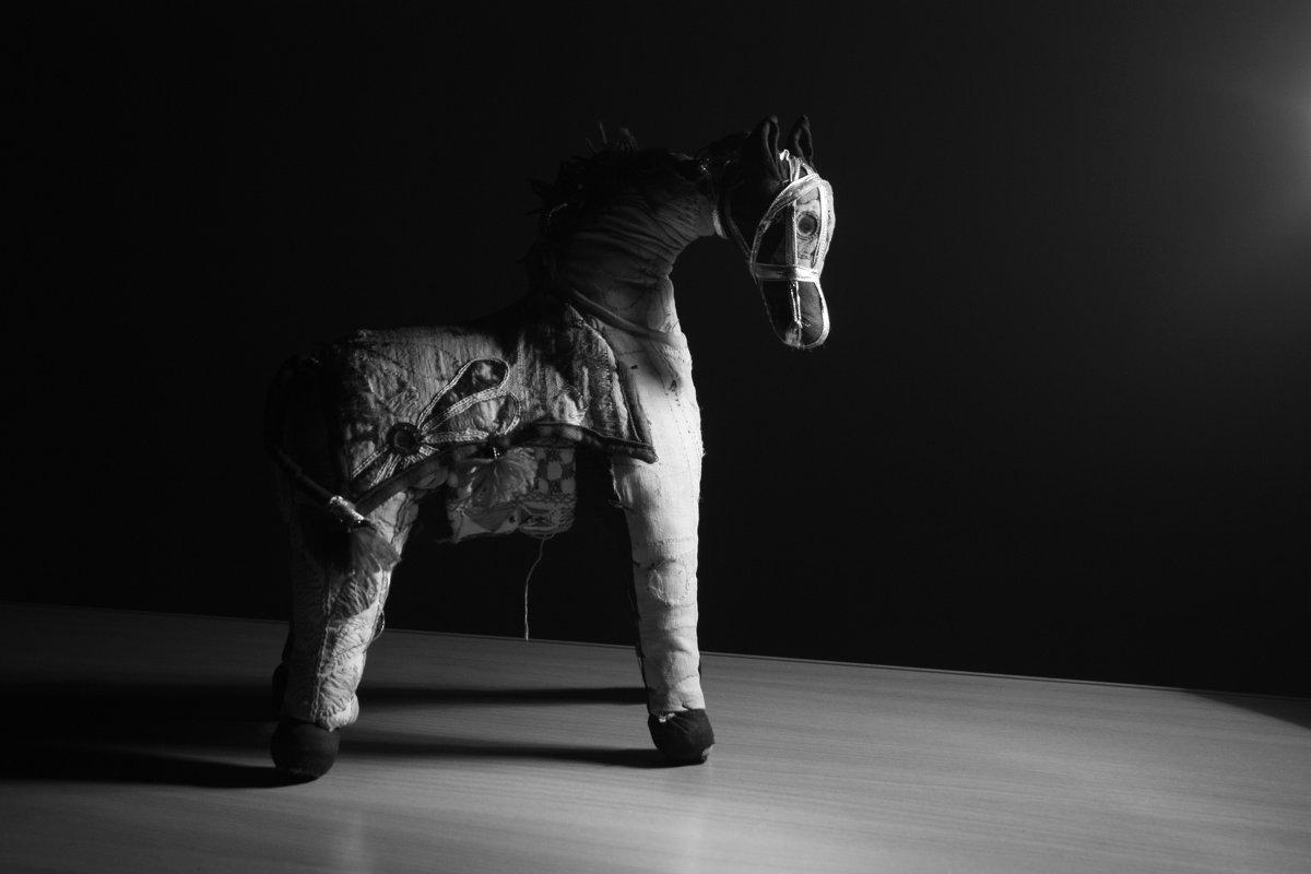 Лошадь Трамантана - Максим Зародов