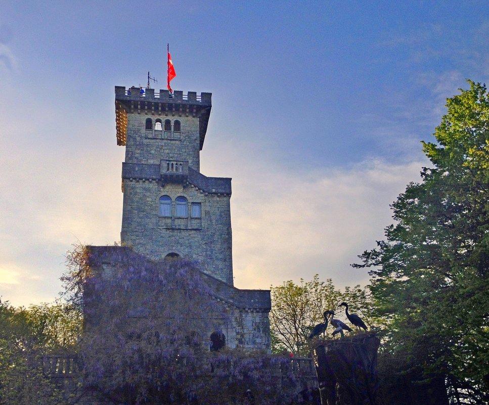 Башня на горе Ахун. Сочи - Tata Wolf