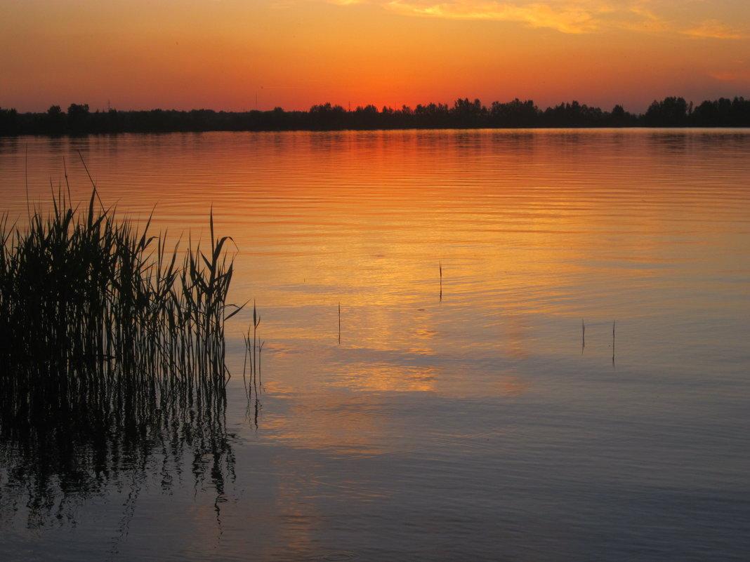 Река и закат - Ирина