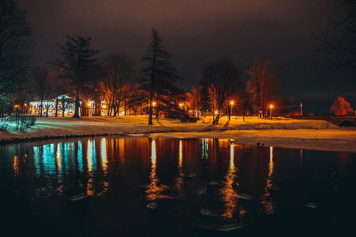 Ночная жизнь - Алёнка Шапран
