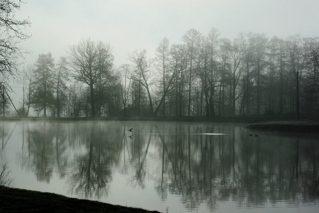 Утро на озере - НикЛеод