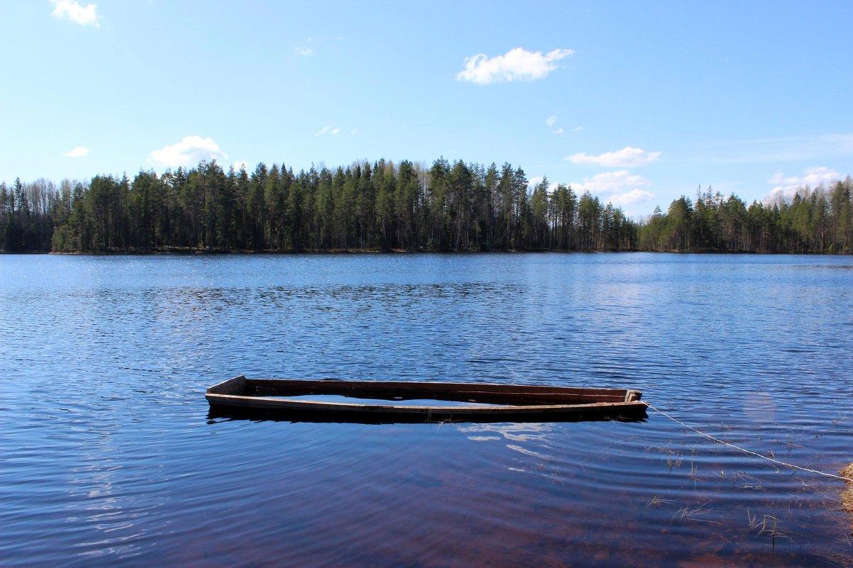 Старая лодка - Андрей Скорняков