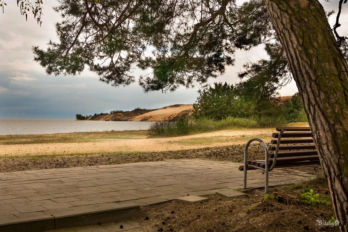 На тихом берегу - Виталий Латышонок