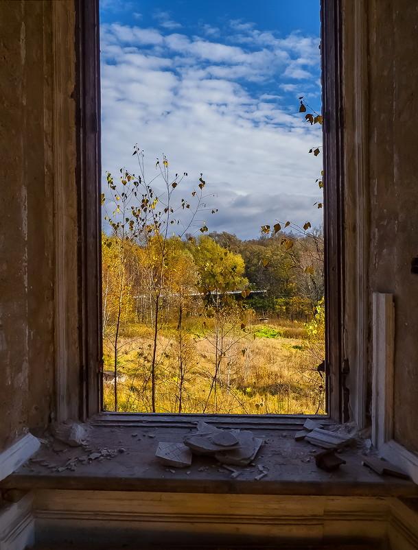 Отрада графа Орлова. Вид из окна дворца - Наталья Rosenwasser