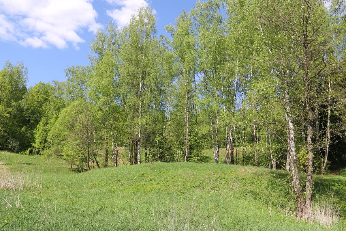 Климовский пейзаж - Владимир Холодницкий