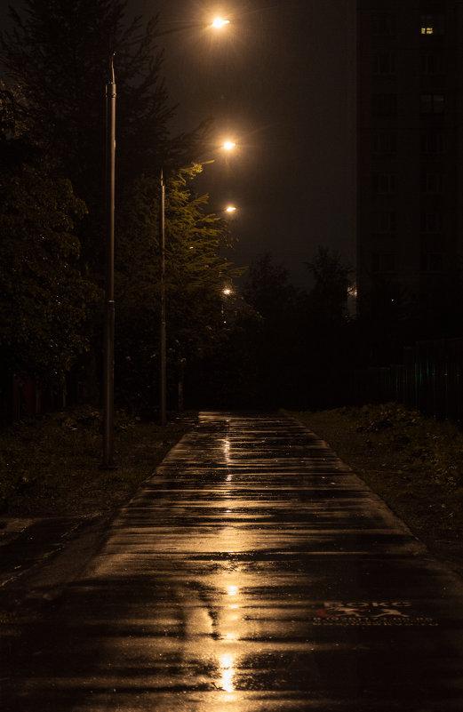 Ночь. Улица. Фонарь... - Надежда Кунилова