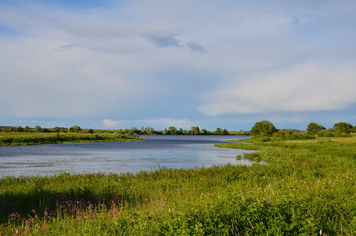 Устье реки - Anton Сараев