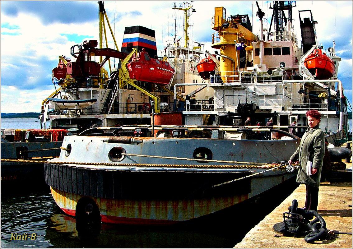 путина рыболовный магазин североморск
