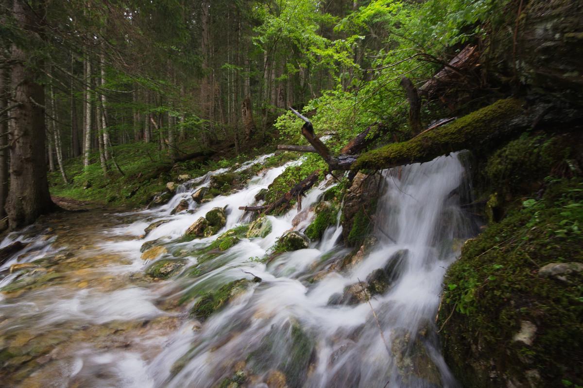 Поздняя весенняя вода - Роман Раевский