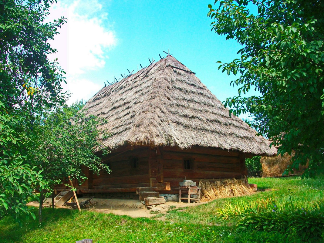 домик в деревне - Яна Панасюк