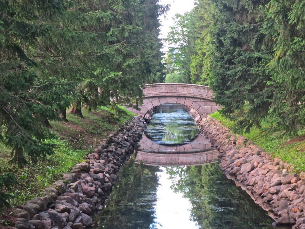 горбатый мост в Пушкине - Елена