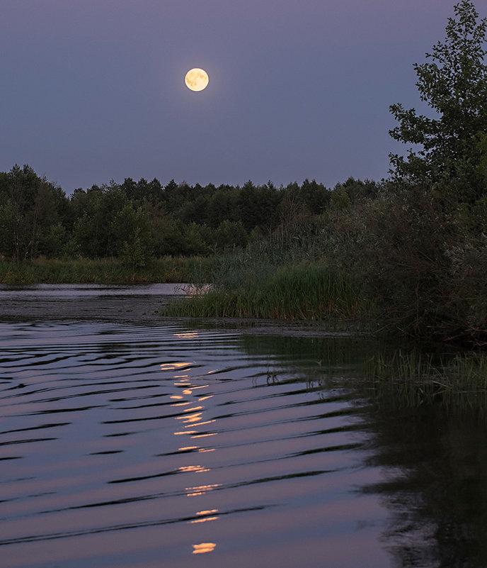 Moon and waves. - Андрий Майковский