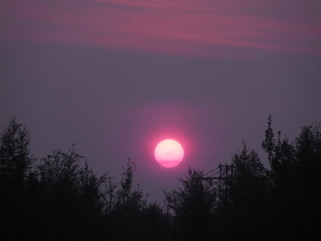 День обещает быть жарким - Наталья Пендюк Пендюк