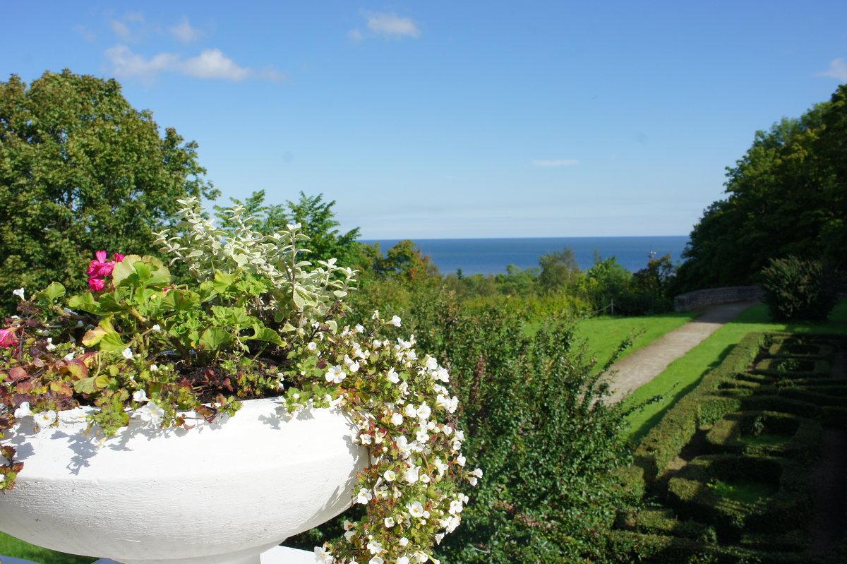 Вид на залив с дворцовая террасы - Елена Павлова (Смолова)