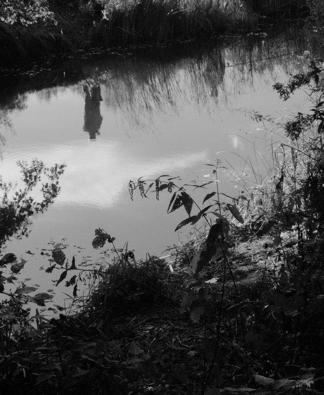 отражение - Diana S