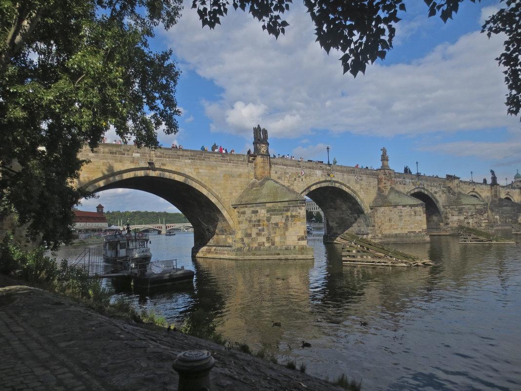 Карлов мост над Влтавой в Праге - Елена