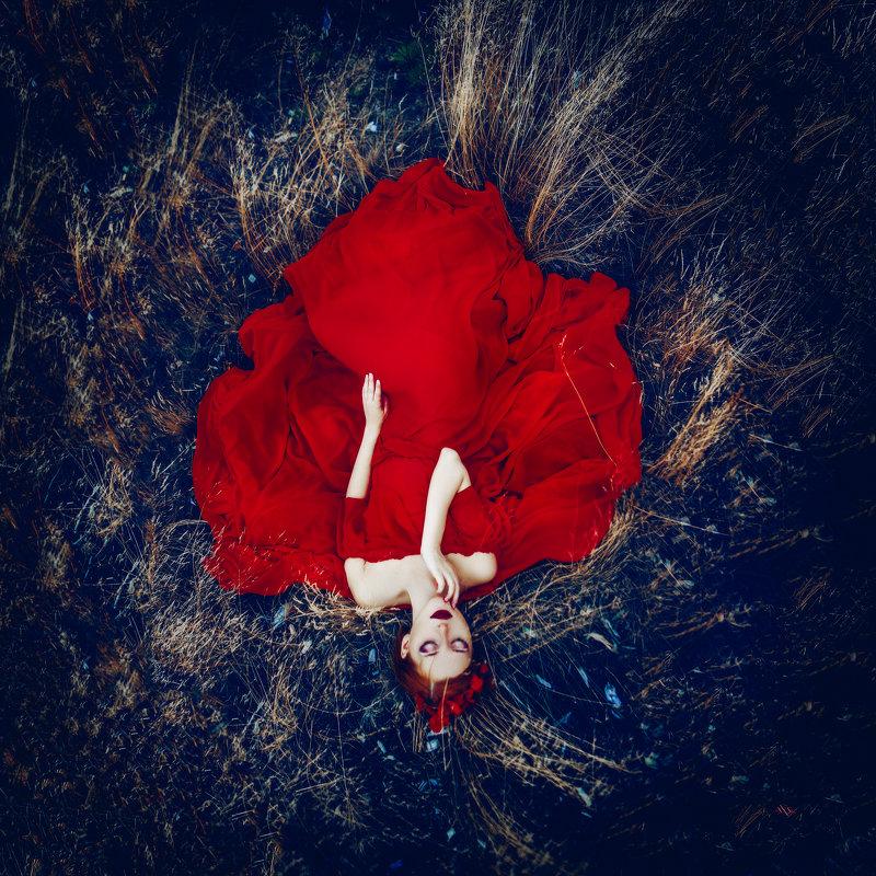 The Burning Flower - Ruslan Bolgov