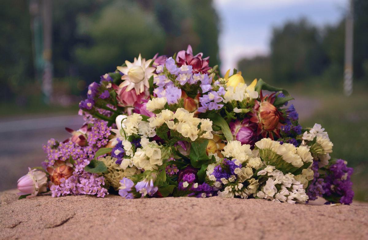 Сухоцветы - Марина