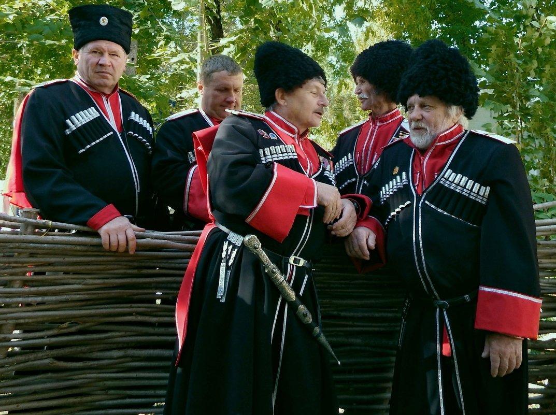 У плетня - Петр Заровнев