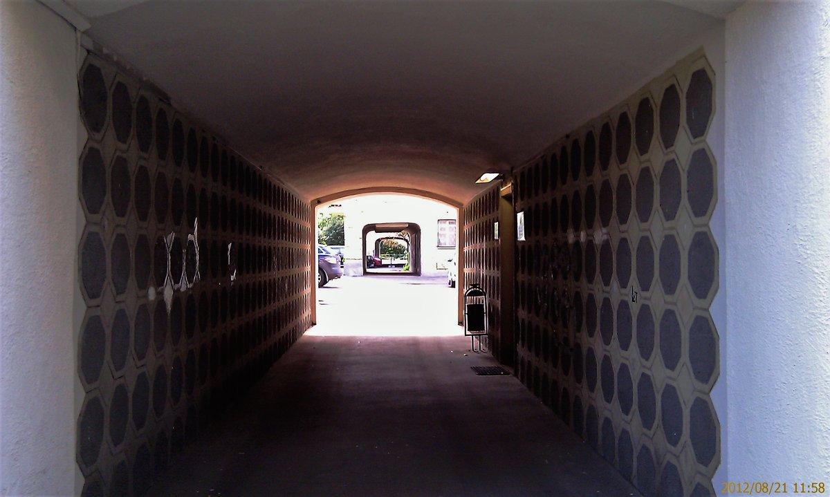 тунель арок - Дмитрий Паченков