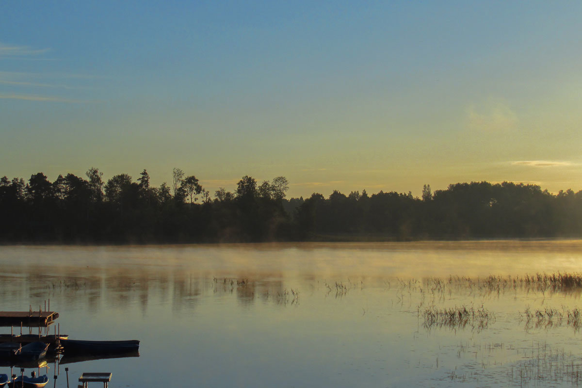 Утро на озере - Татьяна Осипова(Deni2048)