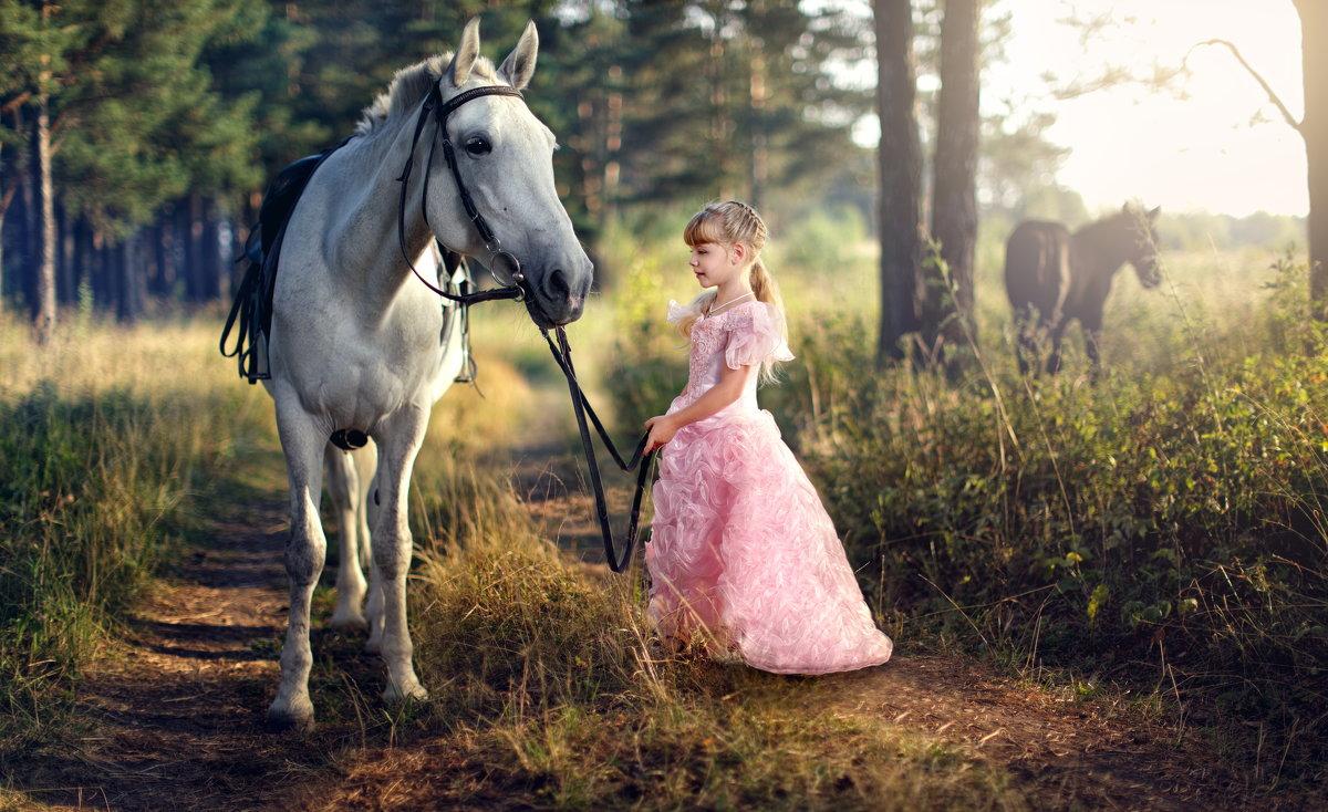 Ночка и маленькая принцесса - Георгий Бондаренко
