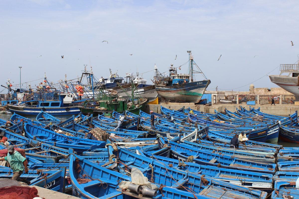 Порт Эс-Сувейра - Ananasik XI
